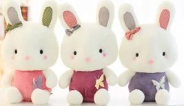 comfort bunnies