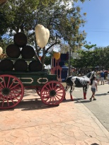 Horse and Buggy in Tulum