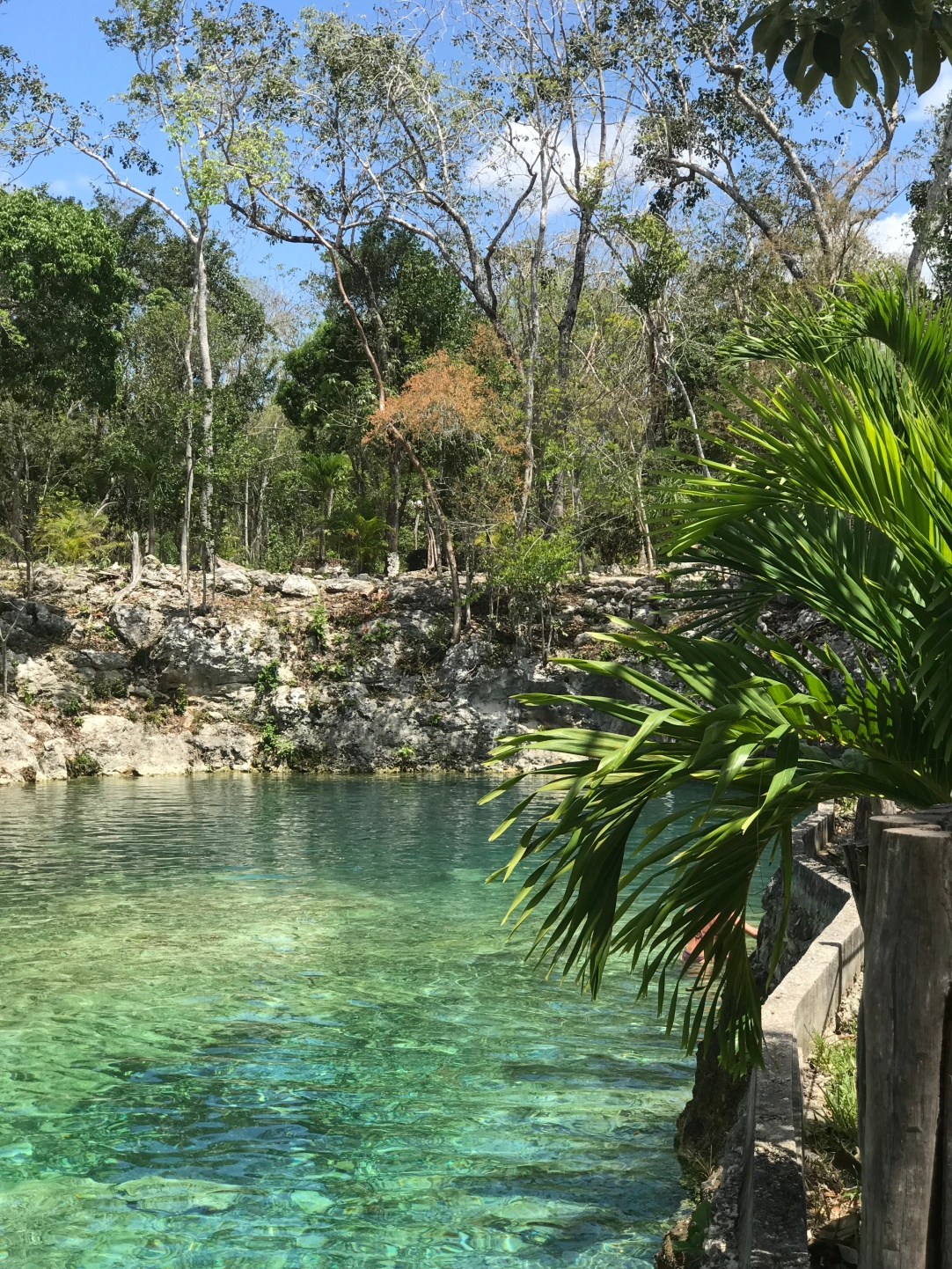 Clear water in the Cenote