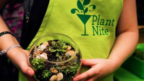 plant-nite-girls-night-out